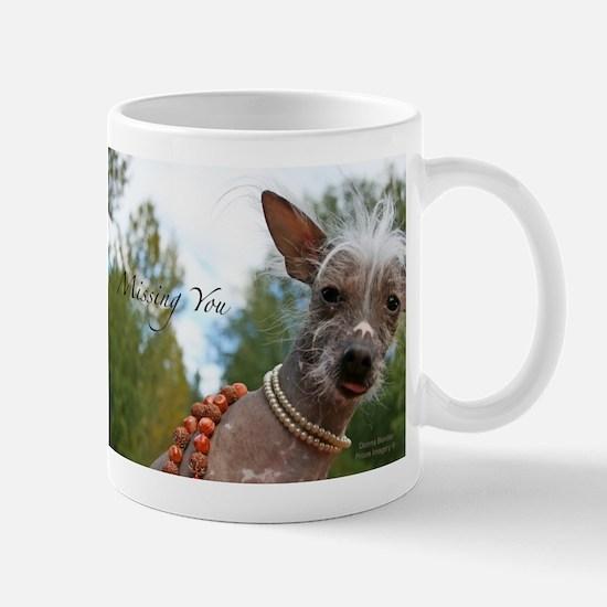 Sake Mug