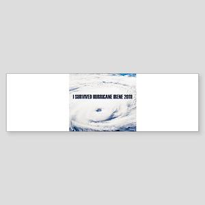 I Survived Hurricane Irene! Sticker (Bumper)