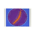 centipede Rectangle Magnet (100 pack)