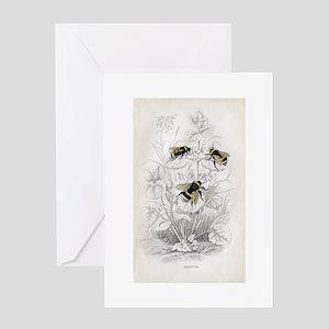 Vintage Bumble Bees Greeting Card