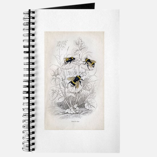 Vintage Bumble Bees Journal