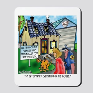 The Right To Remain Silent Mousepad