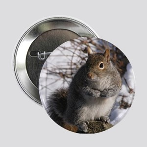 Gray squirrel Button