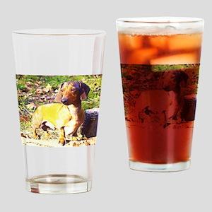 Plotting Mini Doxie Drinking Glass