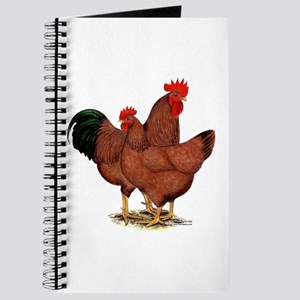 Production Red Chickens Journal