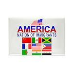 Patriotic America NOI Flags Rectangle Magnet (100