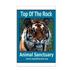 Apache Tiger Mini Poster Print