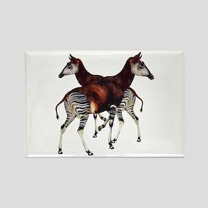Okapi Rectangle Magnet