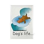 Dog's Life Rectangle Magnet (10 pack)
