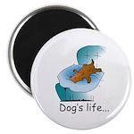Dog's Life 2.25