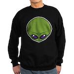 The Visitor (Green) Sweatshirt (dark)