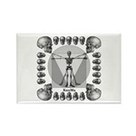leonardo skull Rectangle Magnet (100 pack)