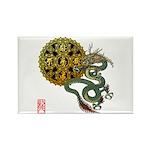 dragon mandala 1 Rectangle Magnet (100 pack)
