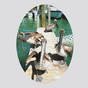 Brown Pelicans Oval Ornament