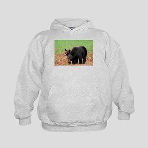Black Bears-Cades Cove Sweatshirt
