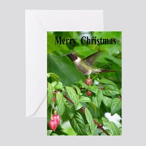 Ruby Throated Greeting Cards