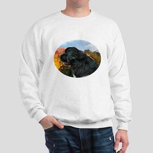 Newf 4 Sweatshirt