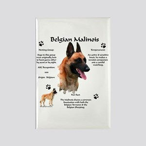 Malinois 1 Rectangle Magnet