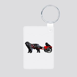 Newf Puppy in Draft Cart Aluminum Photo Keychain