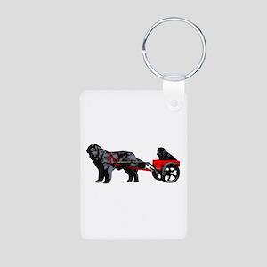 Newf Puppy in Draft Cart Aluminum Photo Keychain