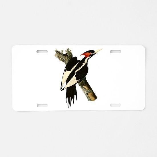 Ivory-Billed Woodpecker Aluminum License Plate