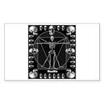 Leonardo da skull Sticker (Rectangle)