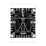 Leonardo da skull Mini Poster Print