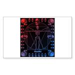 Leonardo da skull 2 Sticker (Rectangle 10 pk)