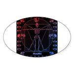 Leonardo da skull 2 Sticker (Oval 10 pk)
