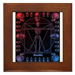Leonardo da skull 2 Framed Tile