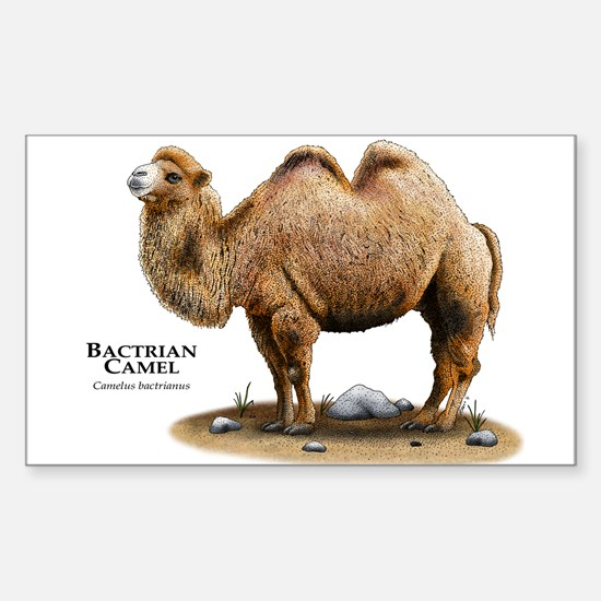 Bactrial Camel Sticker (Rectangle)