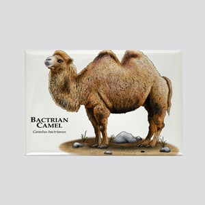 Bactrial Camel Rectangle Magnet