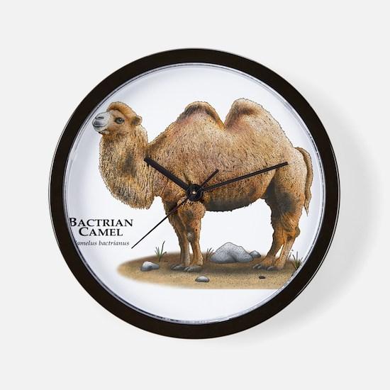 Bactrial Camel Wall Clock