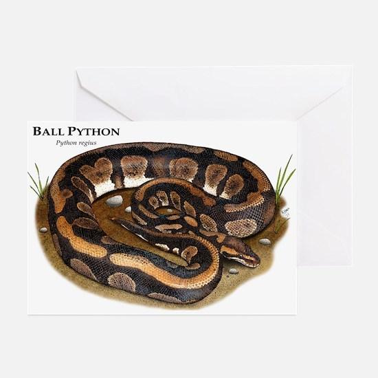 Ball Python Greeting Cards (Pk of 10)