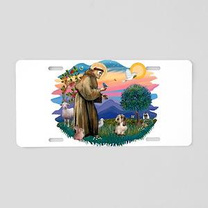 St Francis #2/ PBGV #4 Aluminum License Plate