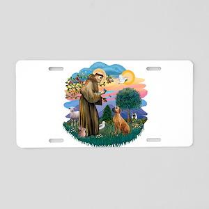 St Francis #2/ R Rback #2 Aluminum License Plate