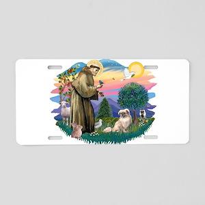 St.Francis #2/ Tibetan Span Aluminum License Plate