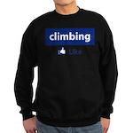 Like Climbing Sweatshirt (dark)