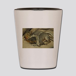Baby Squirrel Shot Glass