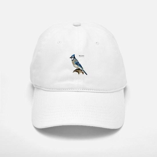 Blue Jay Baseball Baseball Cap