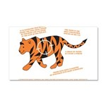 Tiger Facts Car Magnet 20 x 12