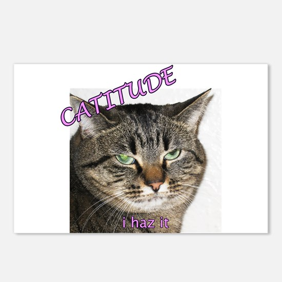 Catitude Postcards (Package of 8)