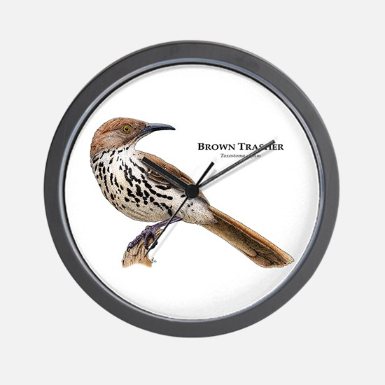 Brown Thrasher Wall Clock