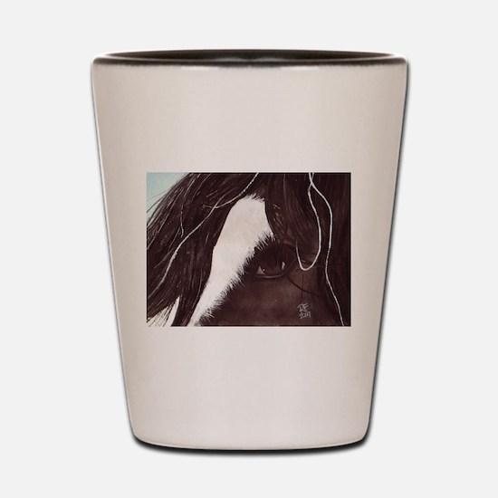 Gypsy vanner horse Shot Glass