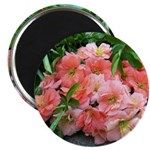 "Cuttings 2.25"" Magnet (100 pack)"