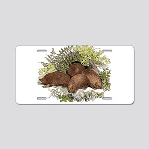 Hedgehogs Aluminum License Plate