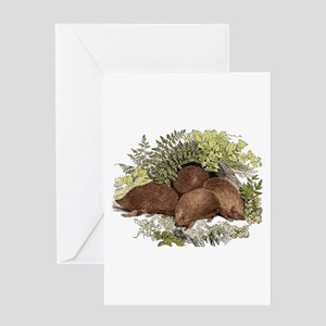 Hedgehogs Greeting Card
