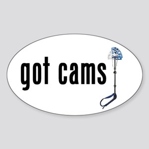 got cams? Oval Sticker #1