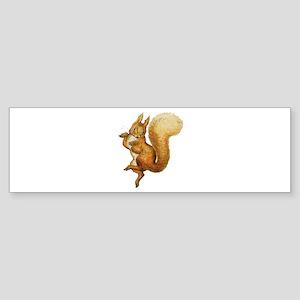 Squirrel Nutkin Sticker (Bumper)