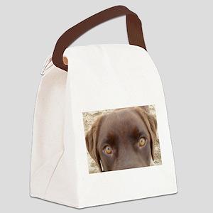 Chocolate Lab Gaze Canvas Lunch Bag
